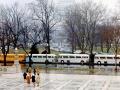 Senior Government Class trip to DC 1